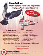 Transparent Bird Gel Bird Deterrent