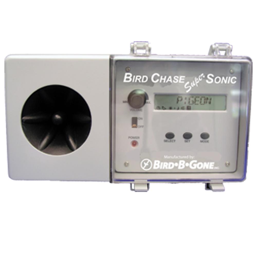 Bird Chase Super Sonic
