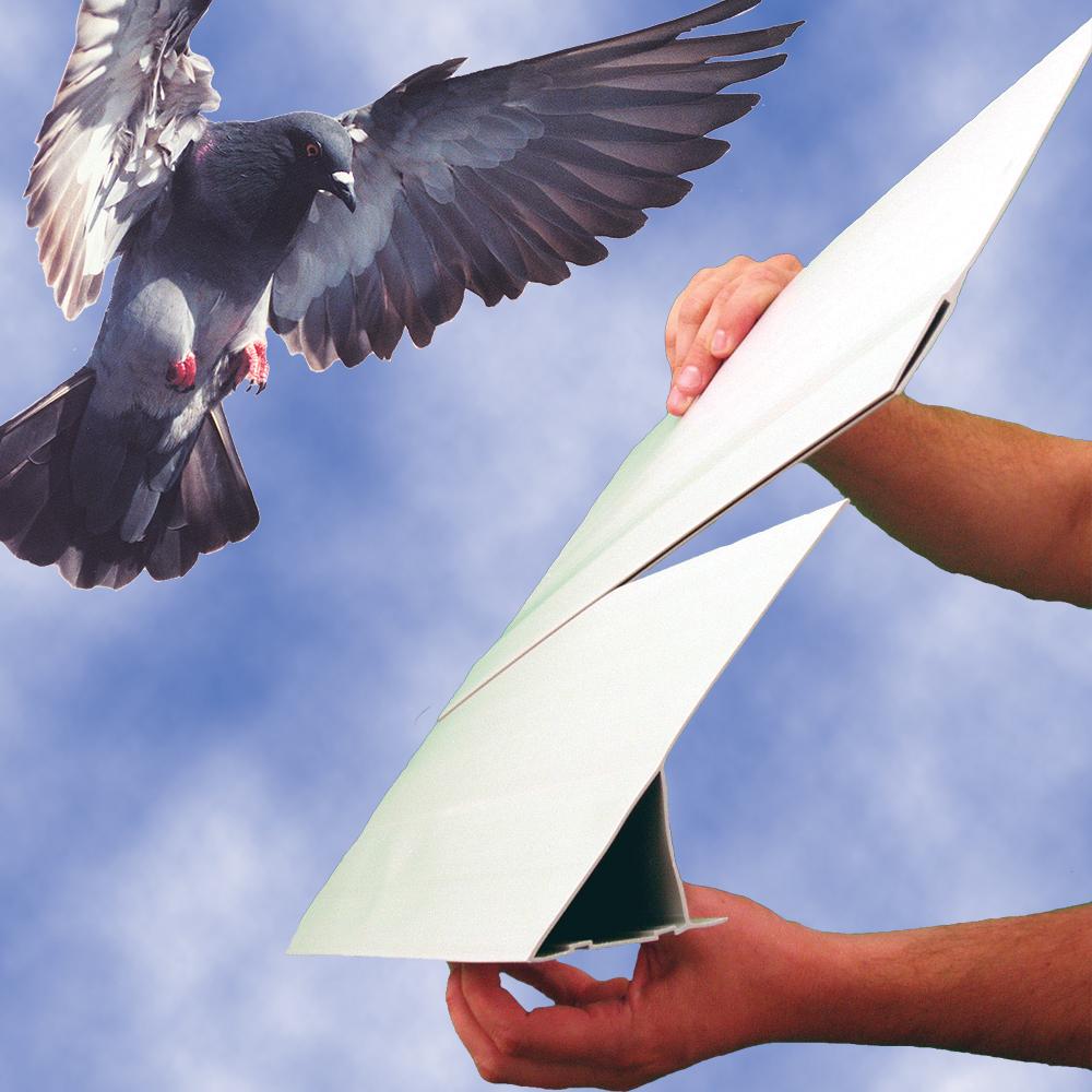 Bird Slope Extender