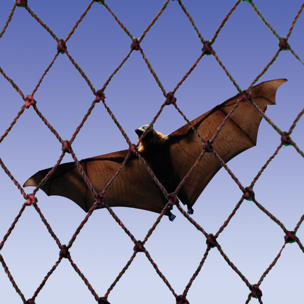 Bat Netting Bat Nets Bird Nets Bird B Gone