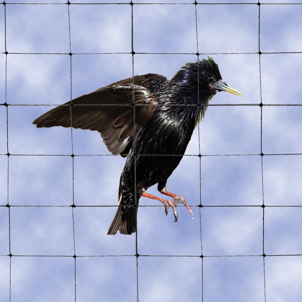 bird netting 1-1/8 inch