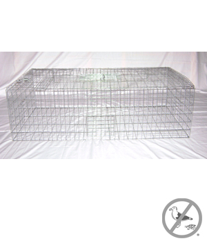 Pigeon Trap Collapsible 40 inch x 22 inch x 12 inch