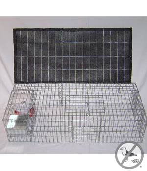 Pigeon Trap with Shade Food Water 35 inch x 16 inch x  8 inch