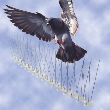 mega bird spikes