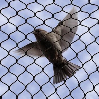 No Knot Bird Netting Pigeon Nets Bird B Gone