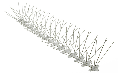 pigeon spikes
